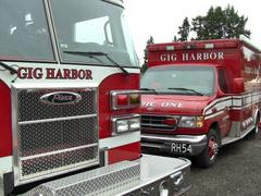 gig harbor fire blotter: bird's nest sparks grass fire